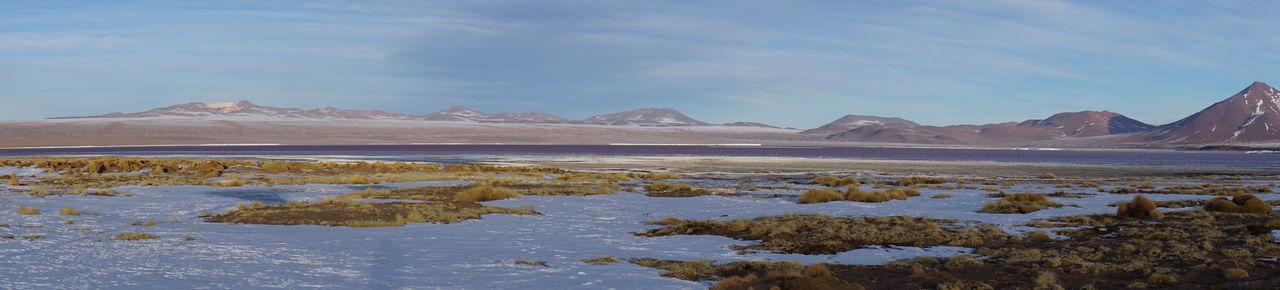 Bolivia Bolivian Altiplano Laguna Colorada Laguna ColoradaBoLiva Panoramic Photography Urban Skyline Uyuni Potosi Viajeabolivia