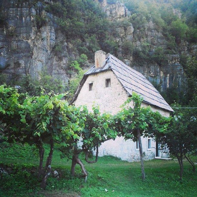 Ig_Albania Visitalbania Albania Theth Mountain Green Natura Nature Nationalpark Igersalbania Igerstirana Igersitalia Land Landscape Landscapes