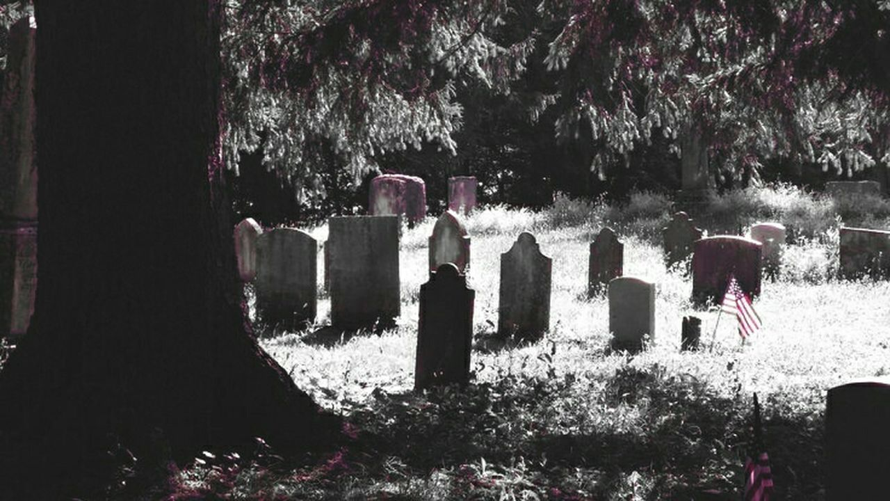 Spooky Atmosphere Taking Photos EyeEm Gallery Eye4photography  Lights And Shadows Graveyard Collection