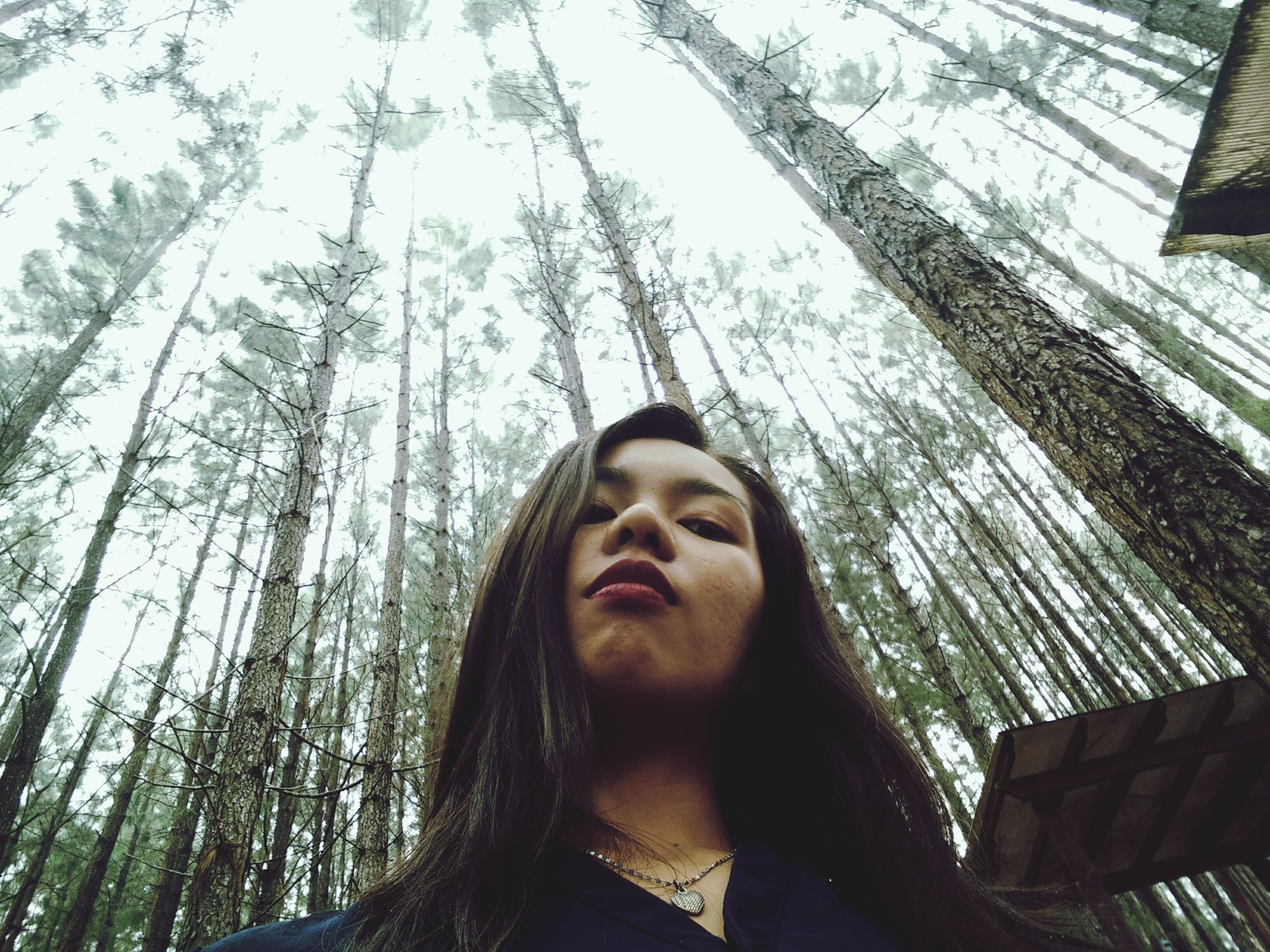 young adult, tree, person, looking at camera, portrait, young women, front view, lifestyles, headshot, leisure activity, smiling, tree trunk, low angle view, casual clothing, day, long hair, outdoors