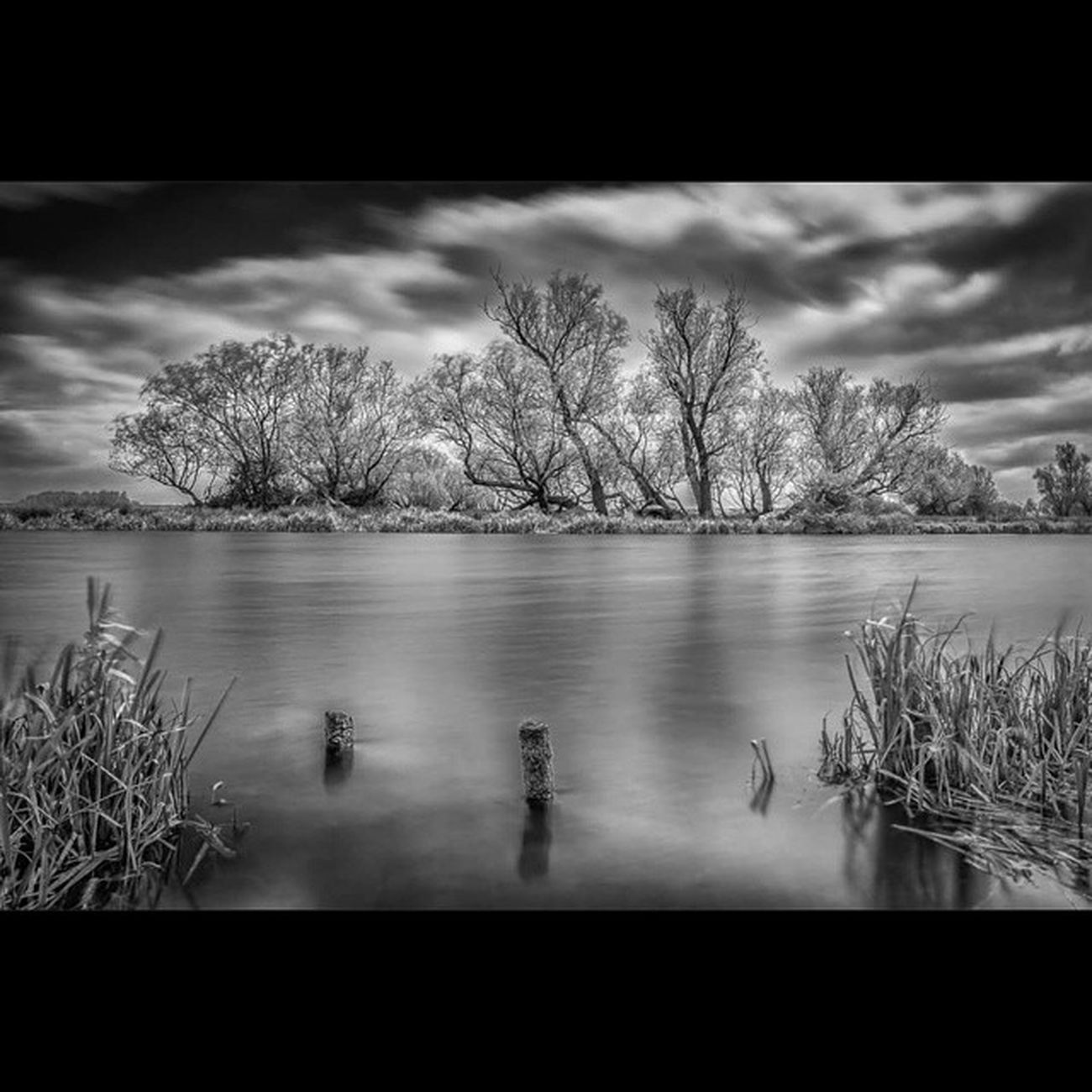 River Ouse Mono Blackandwhite Tree Tree_hunters Water Efex Lee BigStopper