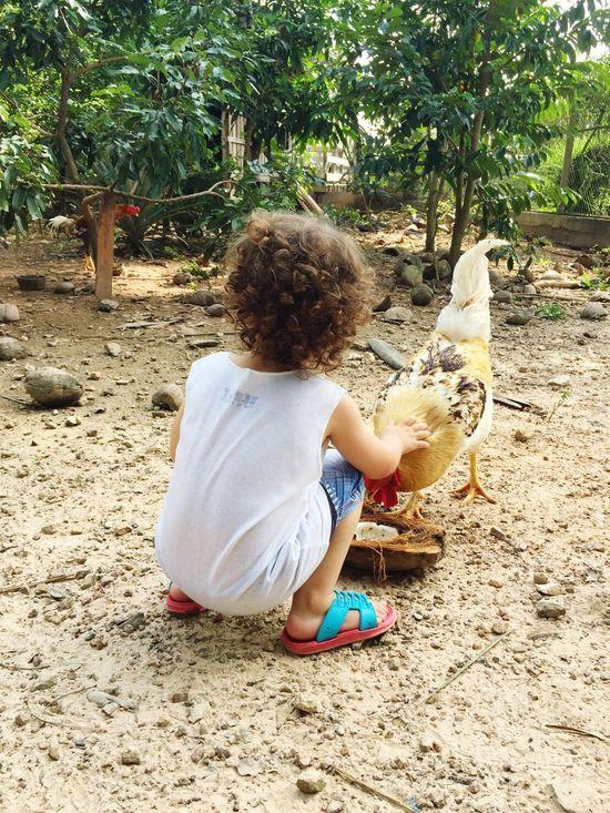 Baby Babyboy Jettsiraberg Animal Friend
