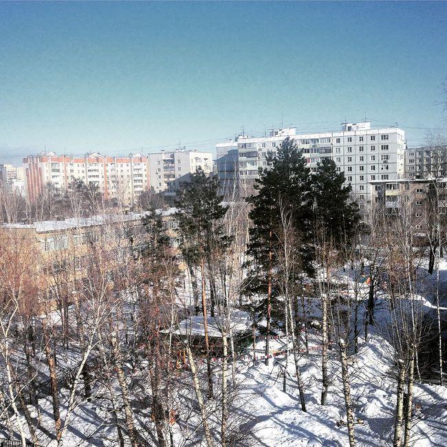Khabarovsk Winter Sky Trees Tree Хабаровск зима деревья House многоэтажки