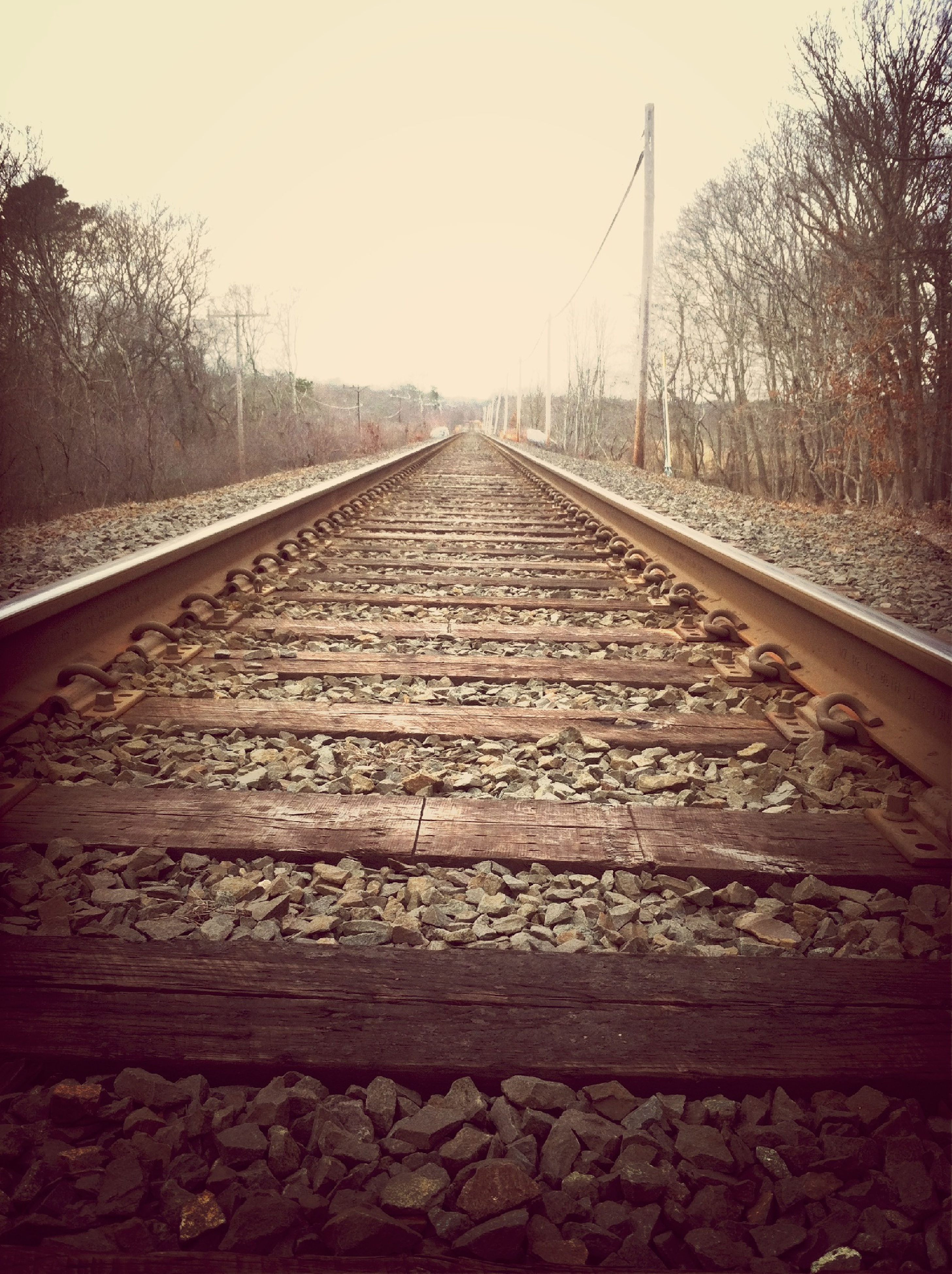 the way forward, railroad track, diminishing perspective, transportation, vanishing point, clear sky, rail transportation, tree, sky, long, surface level, straight, connection, railway track, tranquility, outdoors, day, no people, metal, nature