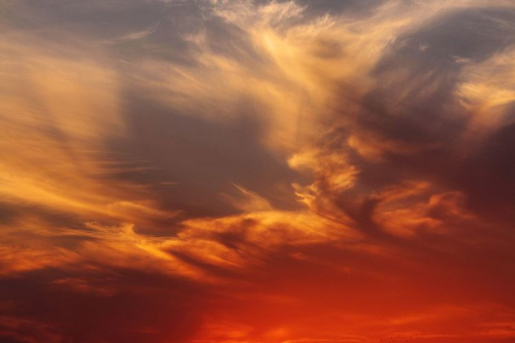 It's all about the hue Backgrounds Beauty In Nature Cloud Cloud - Sky Cloudscape Cloudy Dramatic Sky Full Frame Idyllic Low Angle View Majestic Nature Orange Color Outdoors Scenics Sky Sky Only Sunset Tranquil Scene Tranquility First Eyeem Photo