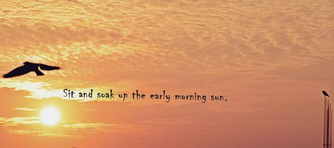 Sunrise Crow Crowd :p Morning Sky Morningclicks