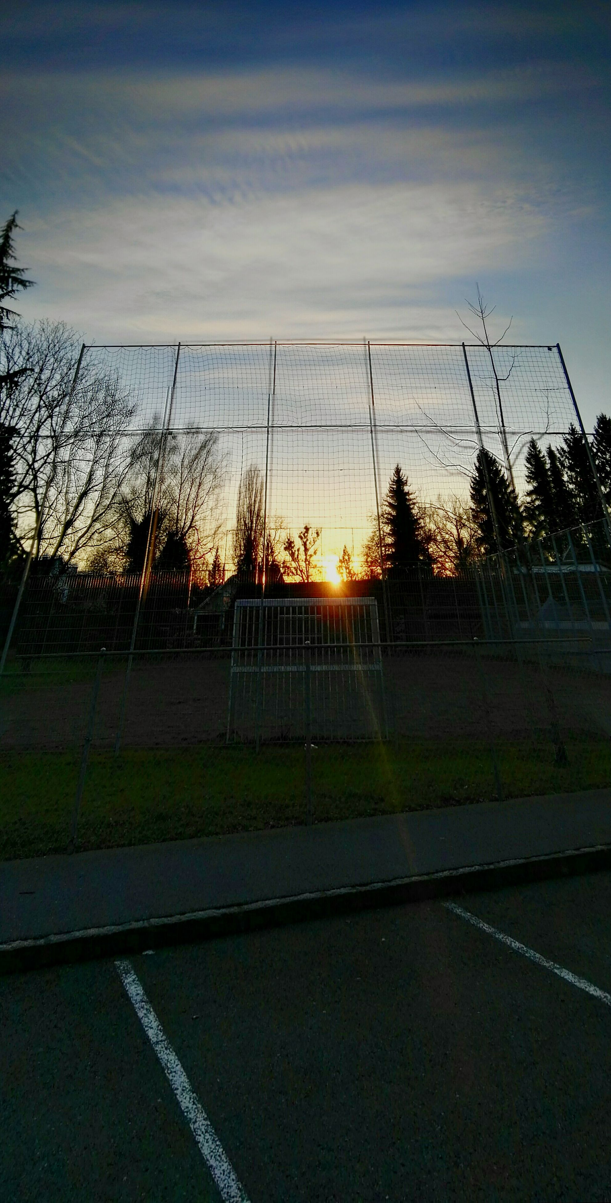 sport, sky, no people, soccer field, net - sports equipment, tree, soccer, outdoors, playing field, grass, day, court, goal post, nature
