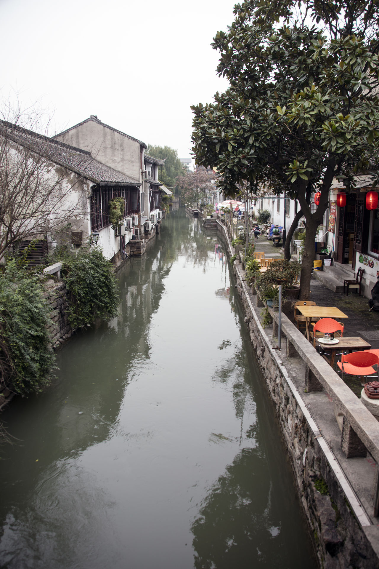 Architecture Building Exterior Canal Canon EOS 5DS China China Beauty China Culture China Photos Diminishing Perspective Ping Jiang Pingjiang PIngjiang Road Residential Structure Suzhou Suzhou China SUZHOU PINGJIANG ST Suzhou River Suzhou, China Tourism Tourist Destination Tree Venice Of The East Water