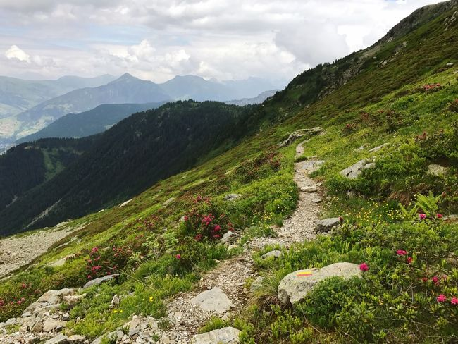 Alps Beaufort  Hiking Hiking Trail Path Mountain Nature Beauty In Nature Grass Tranquility Scenics Tranquil Scene Outdoors Day Sky Landscape Green Color No People