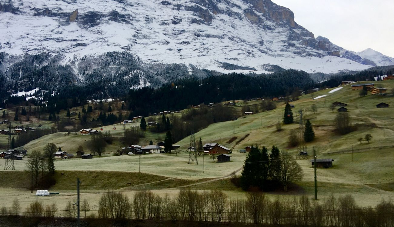 Grindelwald Jungfrau Interlaken Traveling 🇨🇭 Switzerland Traveling Photography Landscape Landscape_photography Autumn Collection Grassland