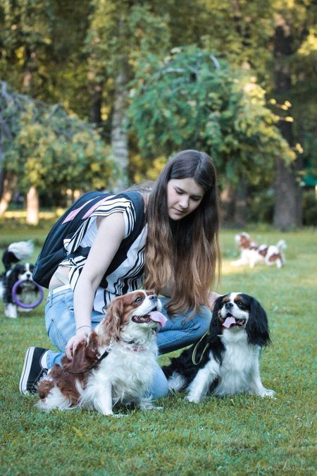 Liza with Tiffany and Teddy ❤ Dog Pets Domestic Animals Young Adult Long Hair Mammal Grass Sitting One Young Woman Only One Person Casual Clothing Girl Cavalier King Charles Spaniel Young Women Outdoors Smiling People Canon Beauty Evening Life Summer Walking Around Freshness Awesome