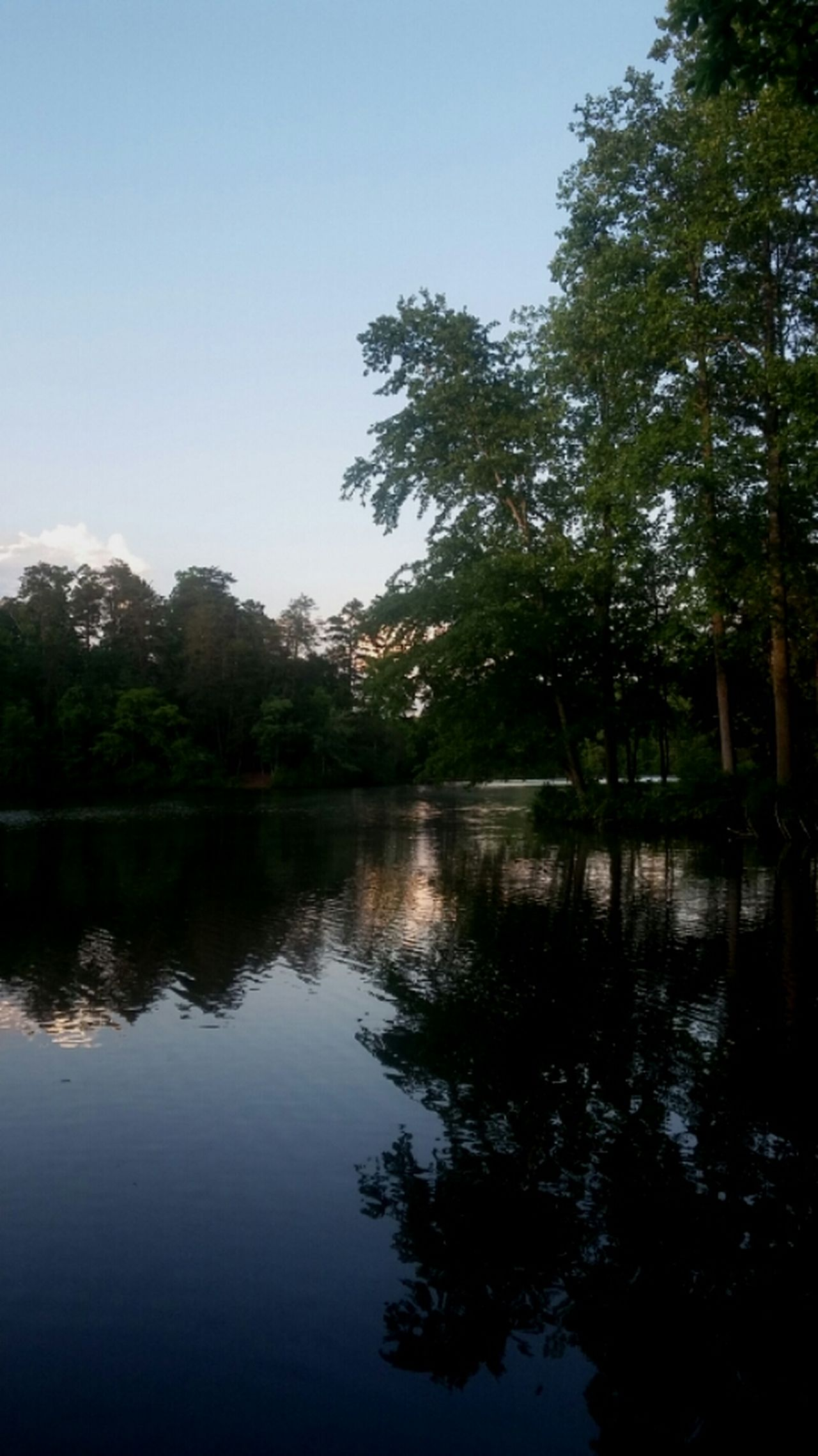 Paris Mountain State Park South Carolina Reflections In The Water Trees Nature Photography Amateur Photography