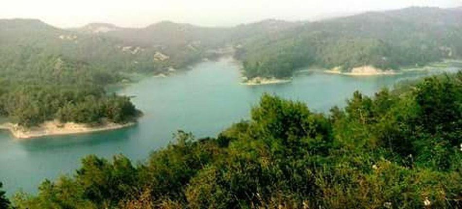 AdanaTurkey Turkuaz Eyem Nature Lover