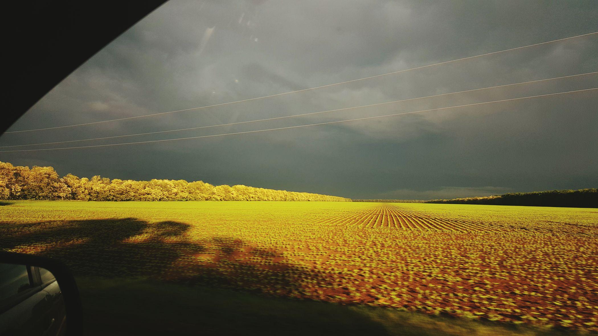 дорогадомой Весна💐🌷🌿 Дорога переддождем передгрозойнебо
