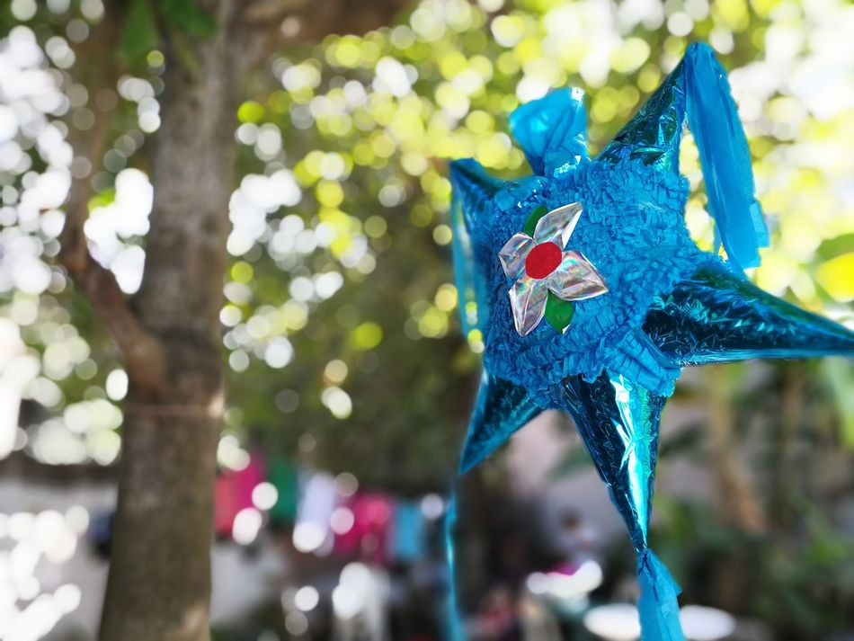 Piñata Piñata Pinata Time PIÑATAS MEXICANAS Fiesta Con Piñata Piñata Azul piñata blue