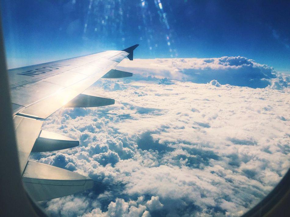 """"""" solo se vive una vez en la vida, pero si lo haces bien, una vez es suficiente """" Airplane Airplane Wing Sky Flying Nature"""