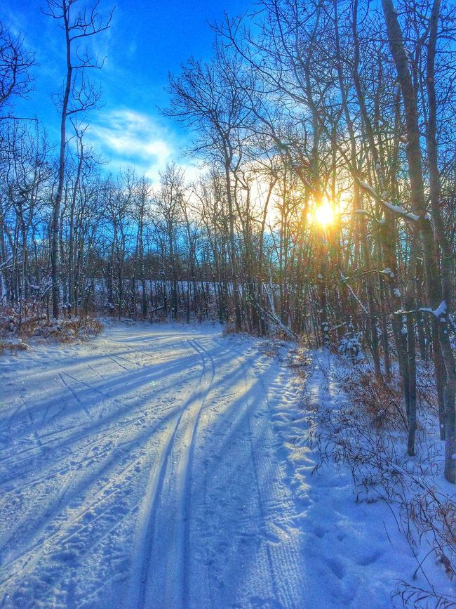 First x-c ski of the year. Still need more snow. Snow Peace And Quiet Enjoying The Sun Eye4nature Quality Time