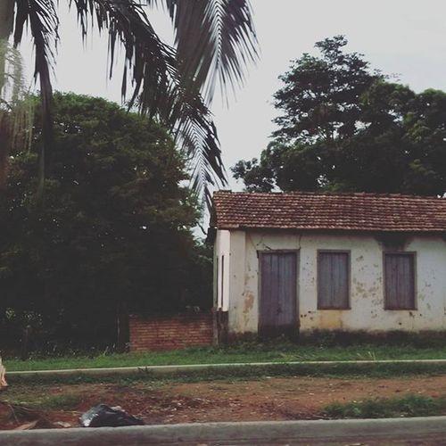 Litlle abandoned house Parededevidro