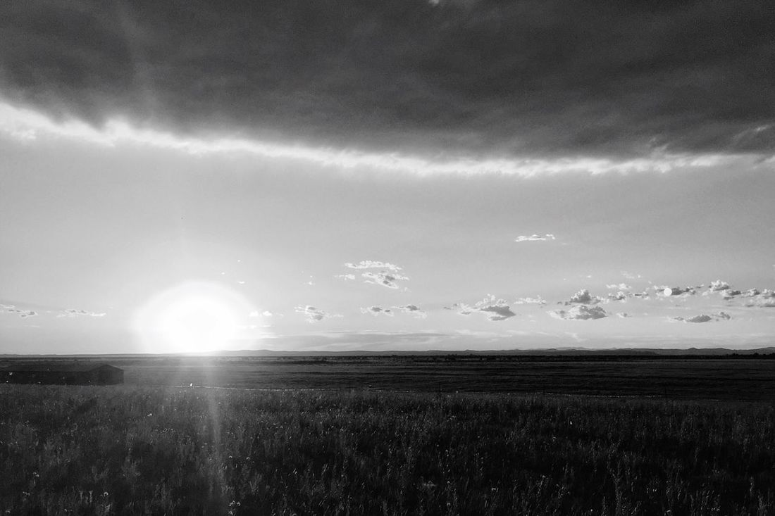 Prairie Sun Sunset Check This Out Hanging Out Hello World Cheese! Relaxing Taking Photos Enjoying Life My Favorite Photo EyeEm Best Shots - Black + White TheWeekOnEyeEM EyeEm Black & White Black And White Photography Blackandwhite Photography EyeEmBestPics EyeEm Best Shots EyeEm Best Edits Check This Out EyeEm Gallery Taking Photos Relaxing Cheese!