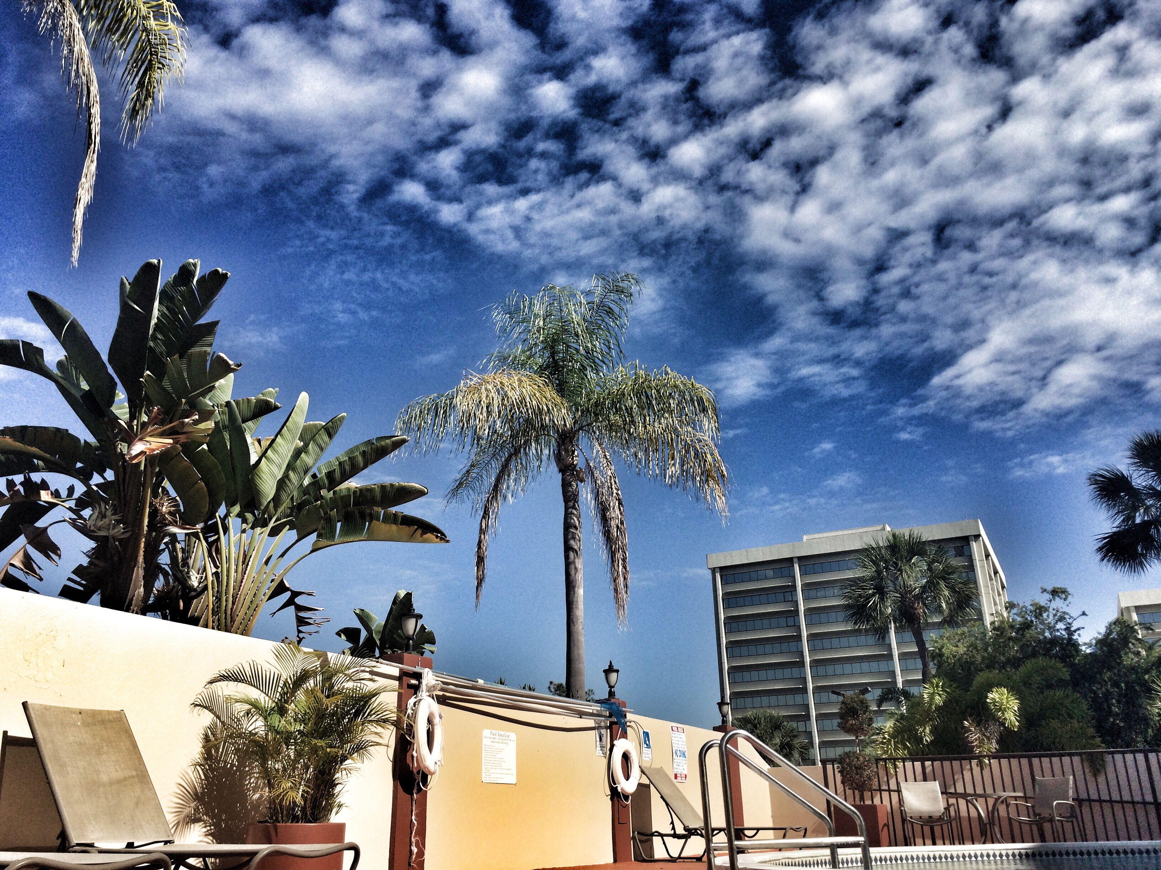 Tampa City Life Bouy-Tiful Skyshot Amateurphotography