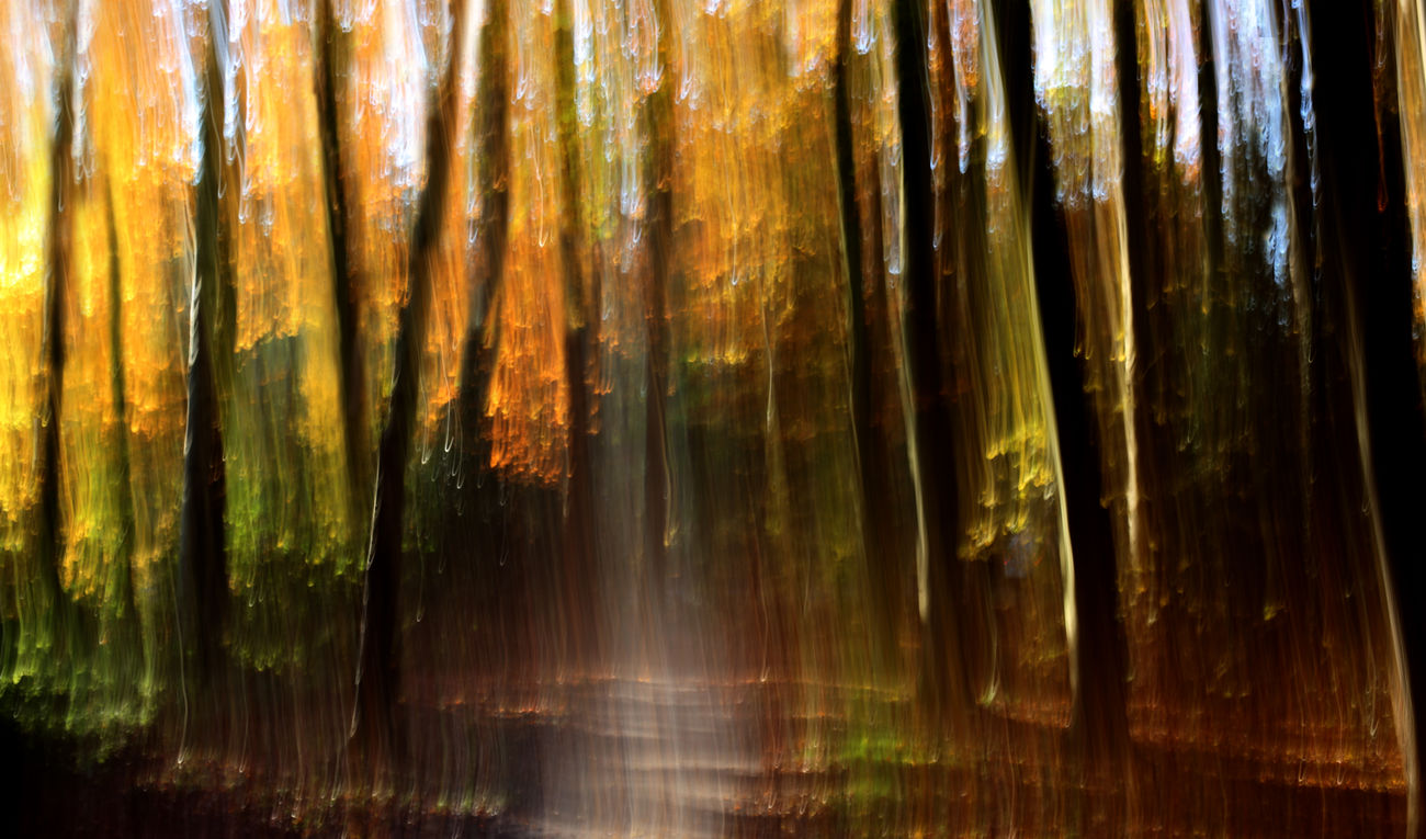 Abstractions In Colors NEM Painterly Abstract Motion Blur NEM Landscapes Landscape #Nature #photography Shootermag AMPt_community