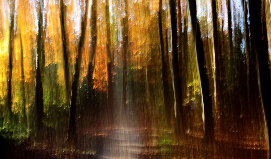 Abstractions In Colors NEM Painterly Abstract Motion Blur NEM Landscapes Landscape #Nature #photography Shootermag AMPt_community