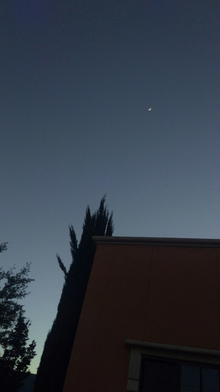 moon, silhouette, architecture, low angle view, clear sky, building exterior, sky, tree, no people, nature, outdoors, astronomy