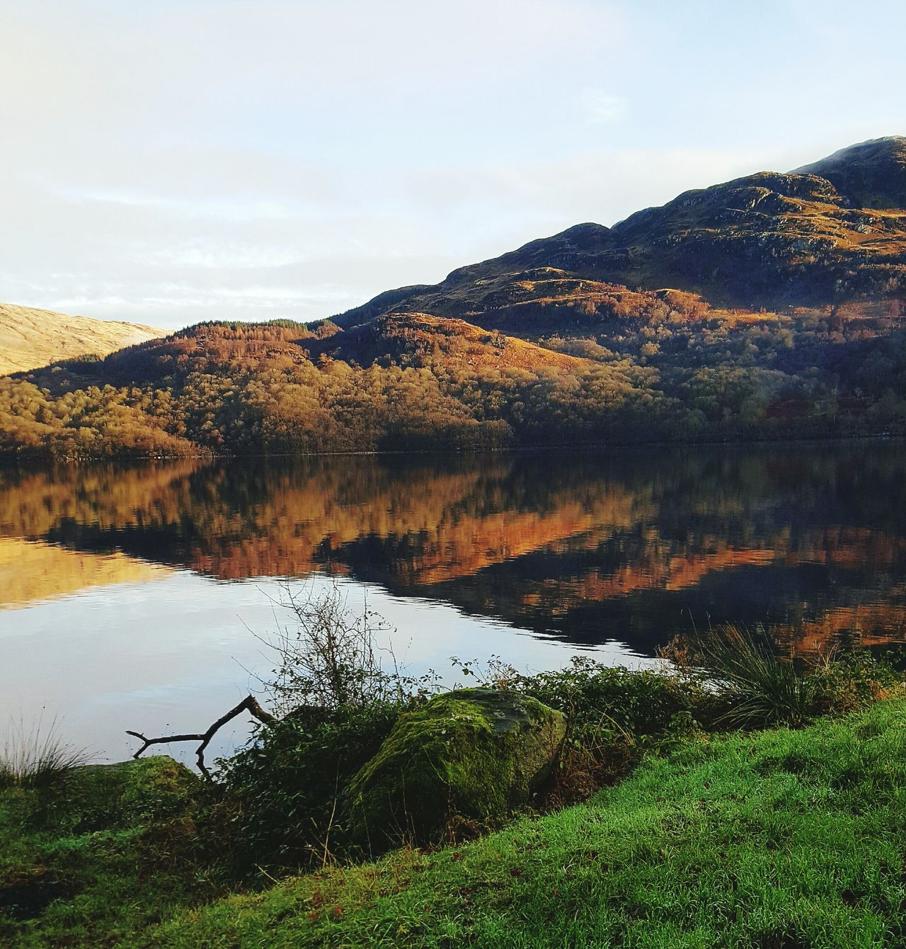 Loch Lomond Beauty In Nature Grass Landscape Outdoors Mountain Tree Green Color Rural Scene No People Day Reflection Scenics Sky Water Lake Nature Springtime LochLomond