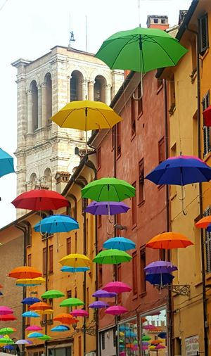 Ferrara Ferrara- Italy Via Mazzini Ombrelli Cielo Di Ombrelli Umbrellas Umbrella's Sky Ferrara 2016 Ombrelliinviamazzini Ombrellicolorati Best Eyem Photo Best Eyem Shots Best EyeEm Shot Best Eyeem Photo Best Eyeem Pics Best Eyem 2016 Streetphotography Colors Streetphotography Eyemphotography Outdoor Photography Outdoors The Great Outdoors - 2016 EyeEm Awards Color Of Life