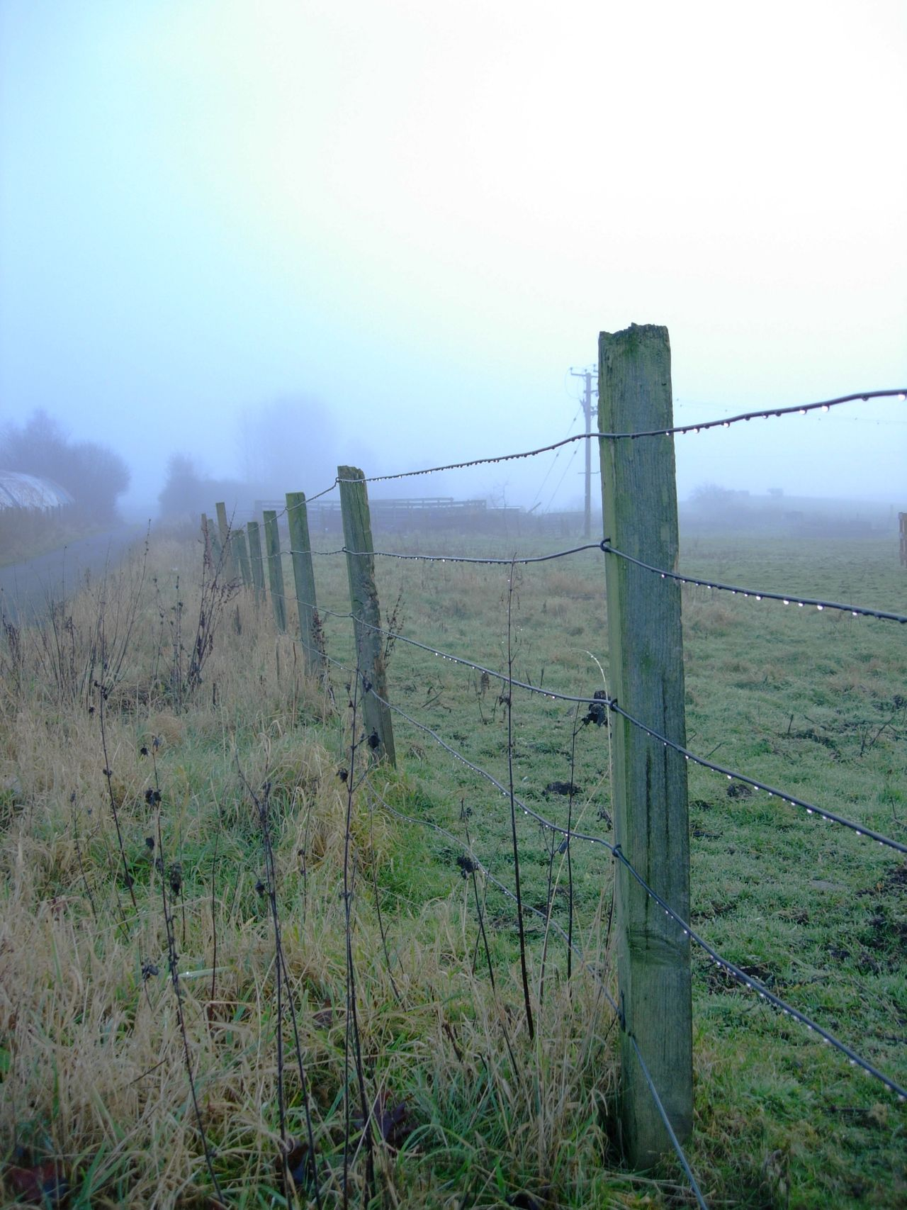 Barbed Wire Boundary Day Fence Foggy Grass Landscape Misty Nature No People Outdoors Protection Razor Wire Safety Security Sky Tranquility Unknown Journey