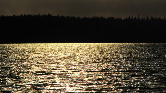 Ripples Surface Golden Gold Learn & Shoot: Single Light Source Sunset рябь Deceptively Simple My Best Photo 2015 Protecting Where We Play Summer Views Landscapes With WhiteWall