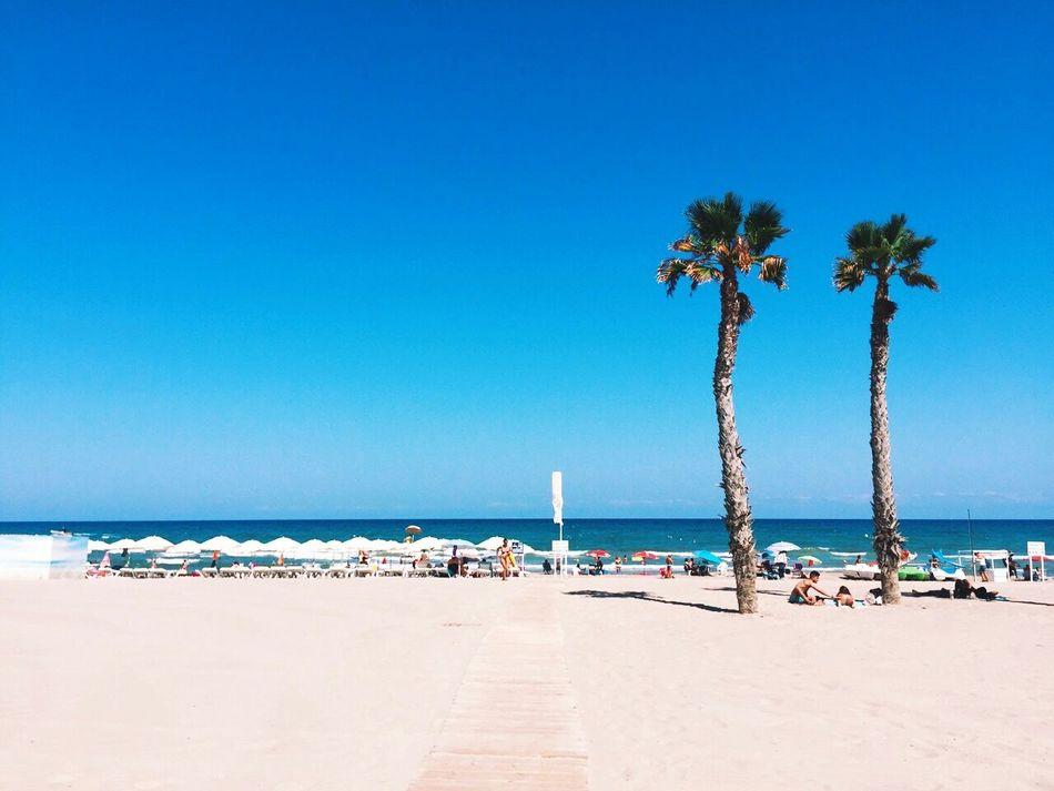 Beautiful stock photos of jamaica, Alicante, Beach, Beach Umbrella, Clear Sky