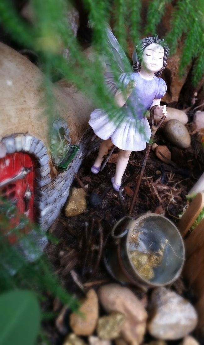 Red door From The Fairy Garden Praying Taking In The Sunlight