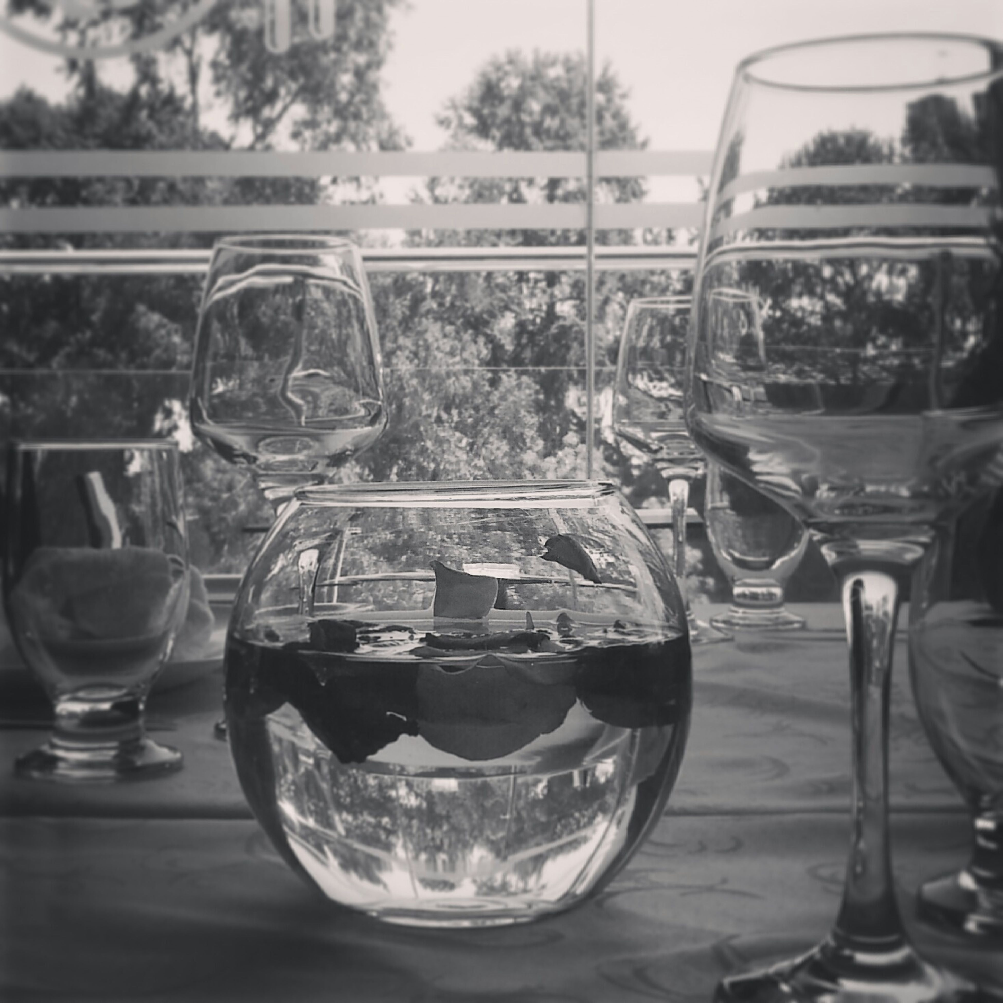 food and drink, glass - material, drink, table, drinking glass, transparent, refreshment, freshness, indoors, wineglass, restaurant, glass, focus on foreground, alcohol, still life, wine, close-up, incidental people, jar, day