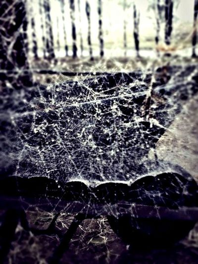 My own photography <3