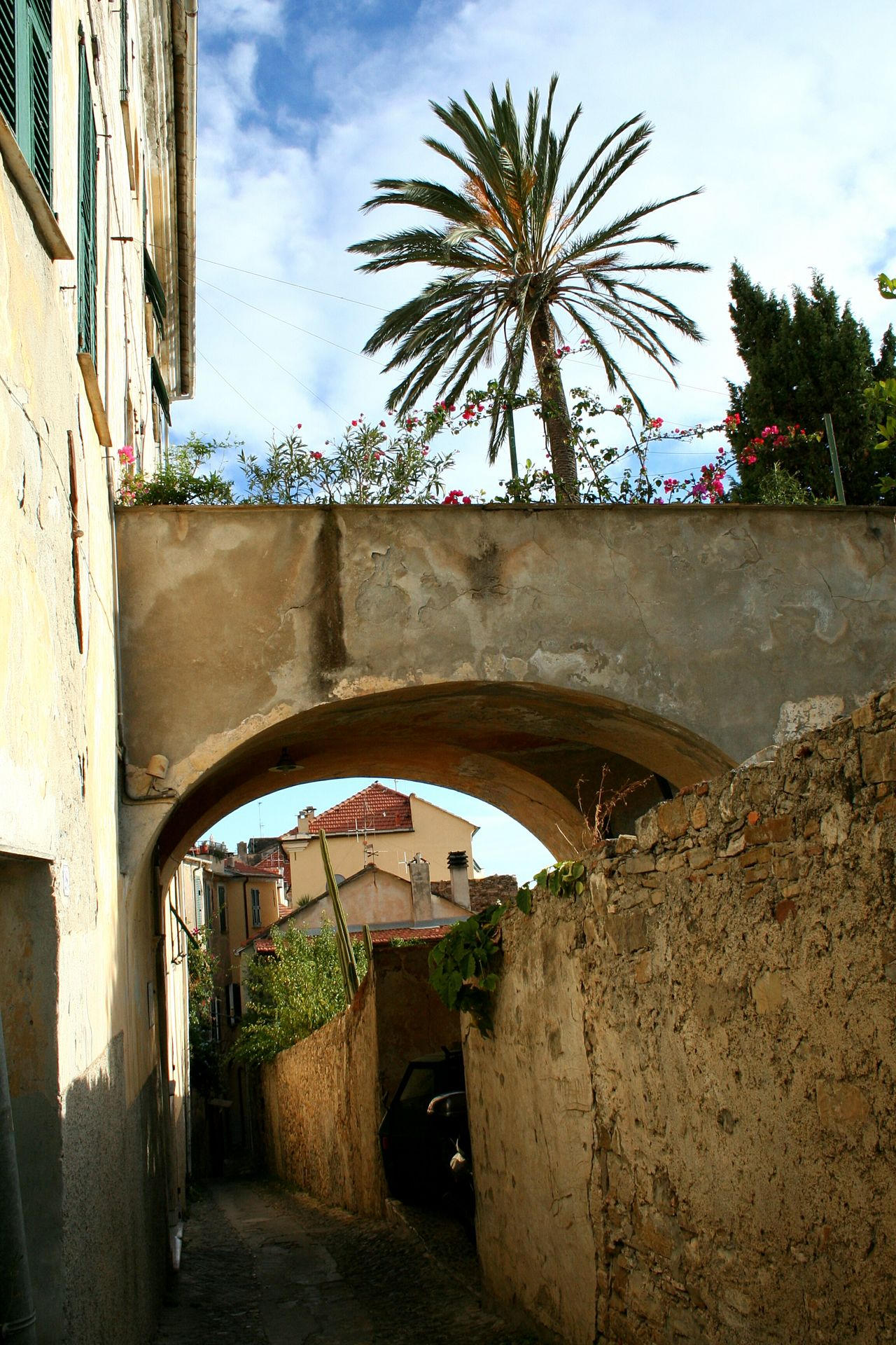 Architecture Palm Tree Built Structure Building Exterior Sky Tree Day Outdoors No People Tourism Travel Summer Vibes Summer Mood Mediterranean Mood Palm And Sky Low Angle View Old Buildings Architectural Details Medieval Italian Village  Mediterranean Village Liguria,Italy Cervo Ligure Vicolo Del Paese Narrow Street