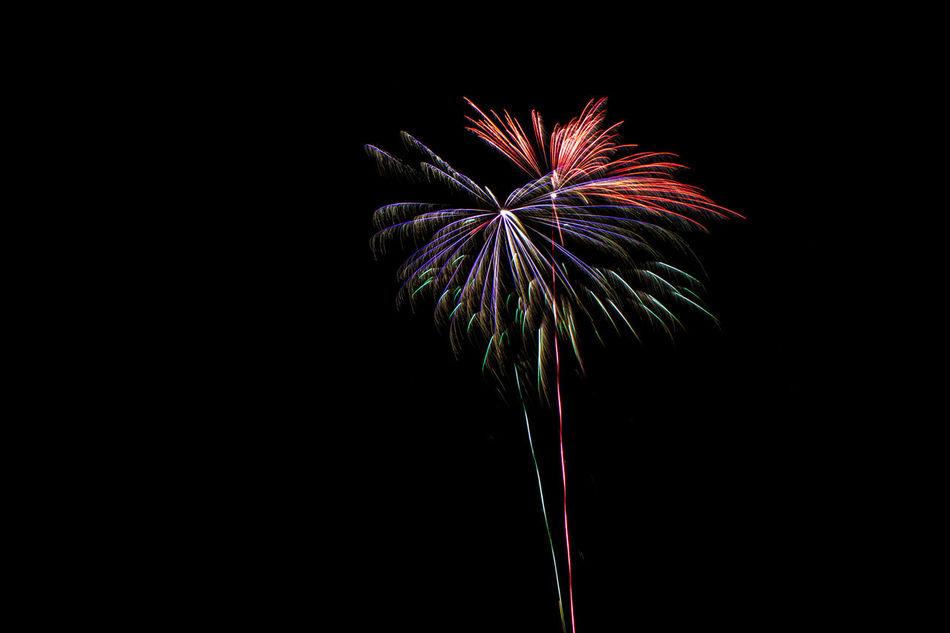 Bunt Celebrate Event Explosion Explosion Of Color Explosions In The Sky Feiern Feuerwerk Feuerwerksfotografie Fireworks Fireworksphotography Long Exposure Nachtaufnahme Nachtfotografie Night Nightphotography Silvester
