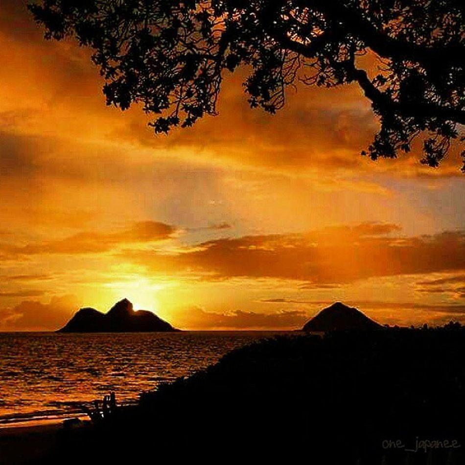 I love sunrises and sunsets! Lanikai  Twinislands Sunrise Skyporn Amazing Kailua  Oahu Hawaii 967🌴4 Gorgeous Luckywelivehi HiLife Aloha Beautiful Dream ExploreHawaii Oldpic