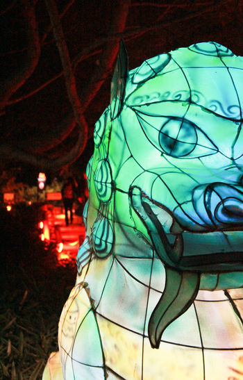 China Chineese Lanterns Close-up Decoration Gardens Of Light Green Color Illuminated Lantern Multi Colored Night