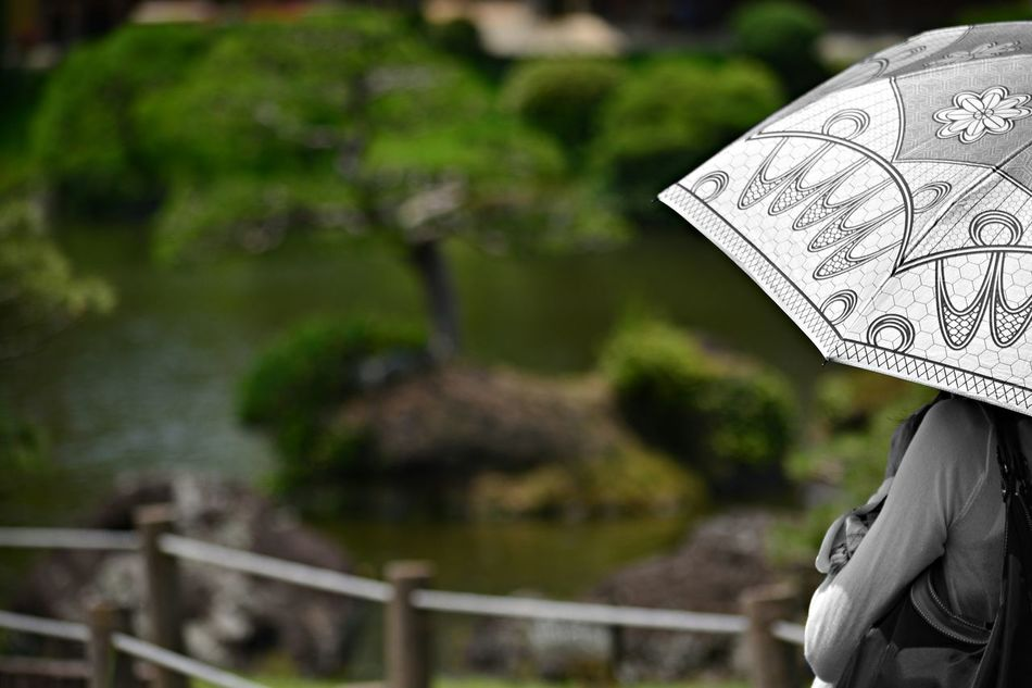 Beautiful stock photos of umbrella, Casual, Contemplation, Day, Focus On Foreground