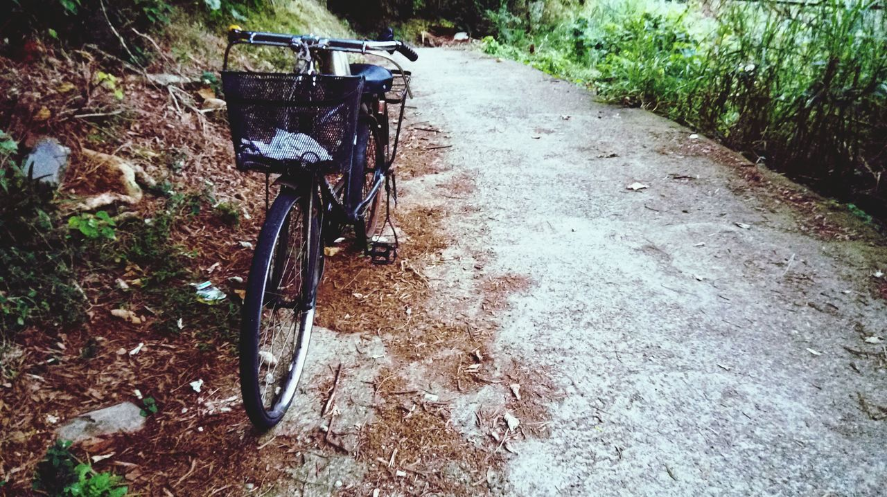 Bicycle Parked On Road
