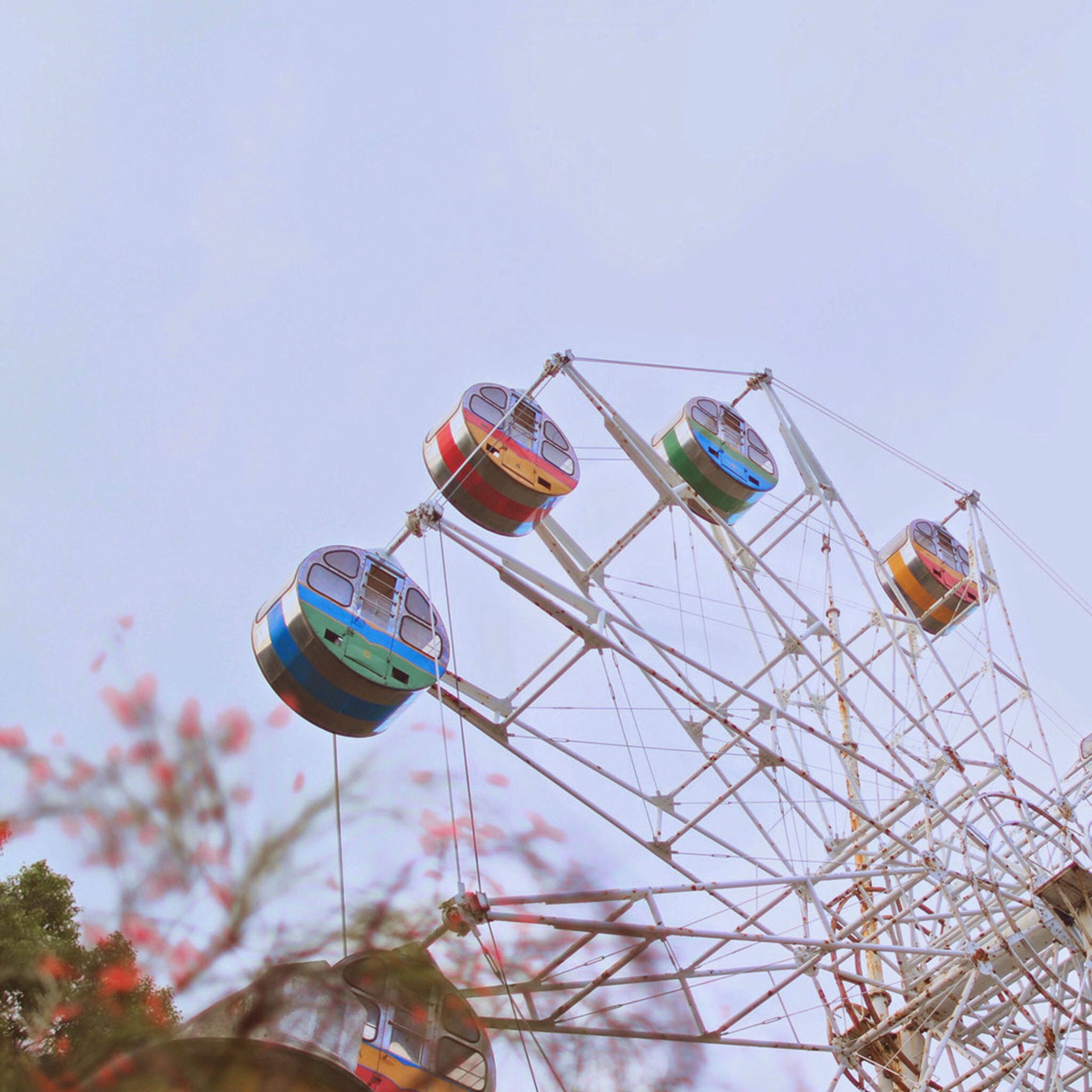 low angle view, clear sky, amusement park, amusement park ride, sky, day, arts culture and entertainment, outdoors, ferris wheel, no people, blue, transportation, hanging, tree, nature, copy space, multi colored, mode of transport, close-up, fun