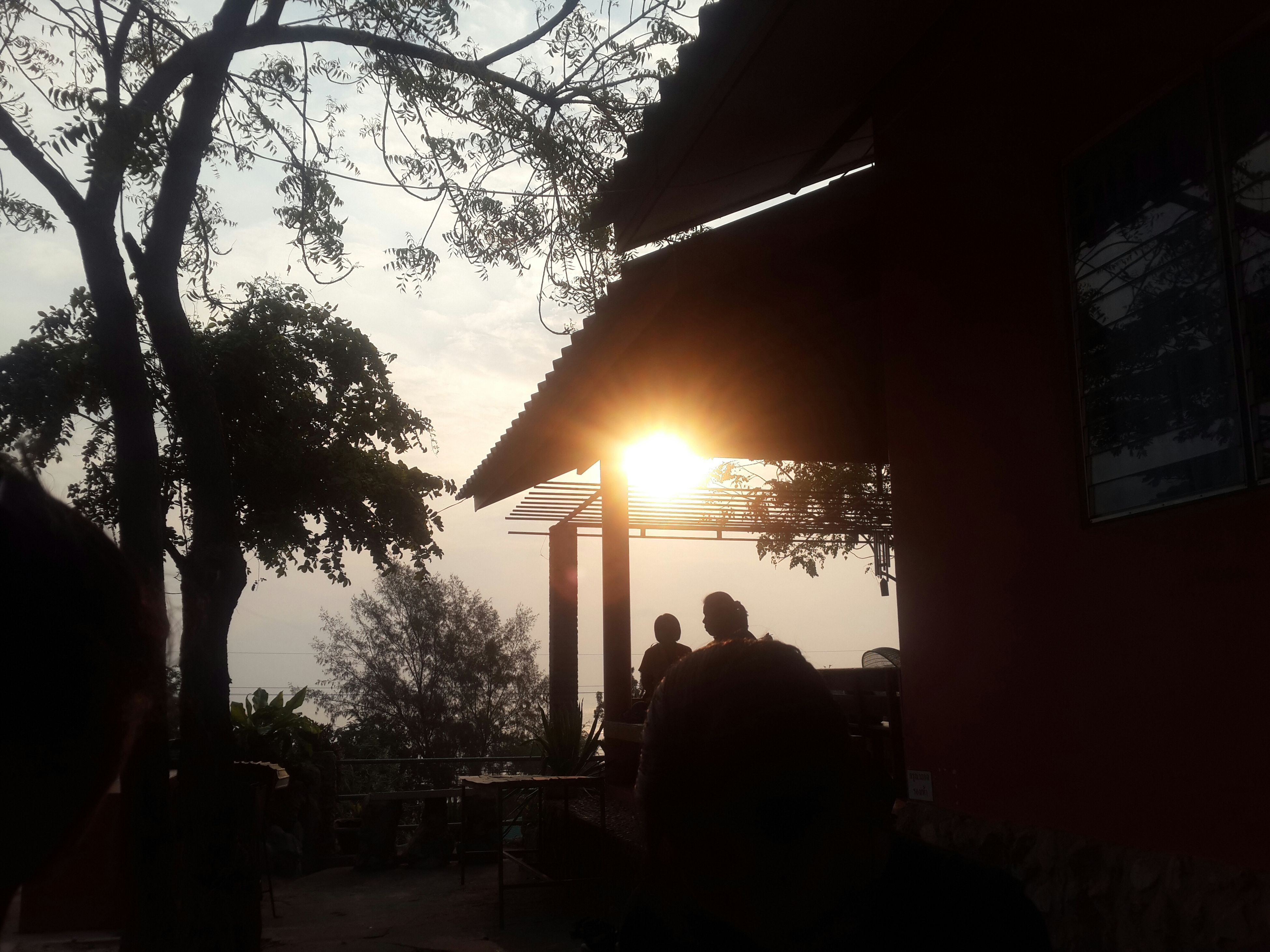 tree, silhouette, sun, sunset, sunlight, sky, built structure, men, lifestyles, lens flare, architecture, sunbeam, leisure activity, nature, clear sky, branch, person, building exterior