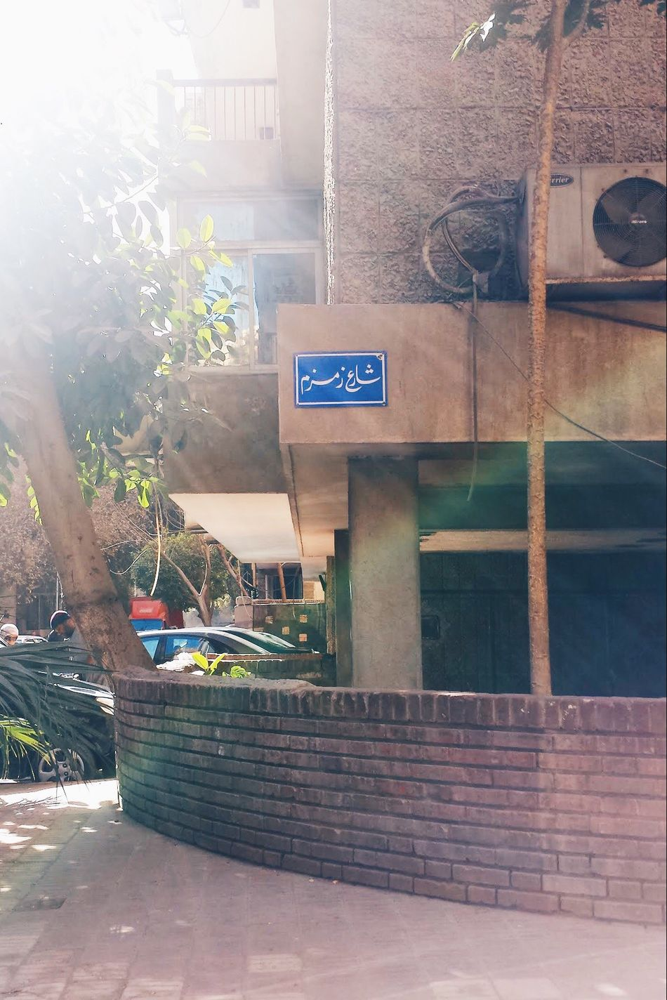 Egyptphotography Sunbeam Outdoors City Road Sign Day Built Structure Building Exterior Architecture Communication No People Cairo City Egypt Street In Front Of In Cairo Window Shadow Tree Taking Photos