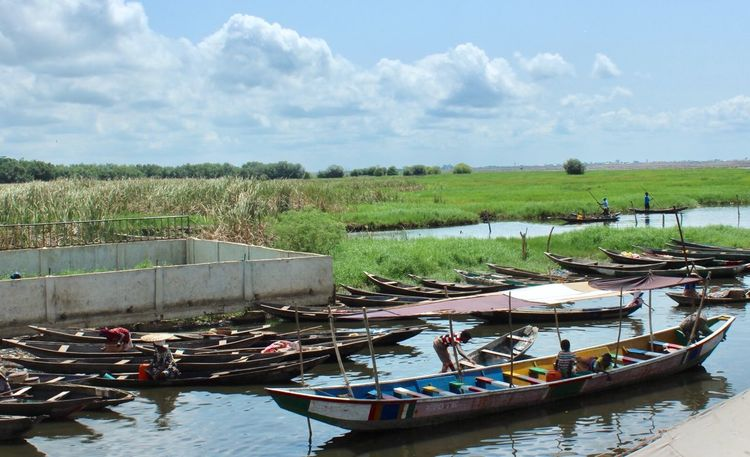 Ganvie - Taxi Local #Africa #africa #streetphotography #landscape #nature #photography Beauty In Nature Boat Cloud - Sky Day Growth Landscape Mode Of Transport Moored Nature Nautical Vessel No People Outdoors River Riverbank Scenics Sky Tranquil Scene Tranquility Transportation Tree Water