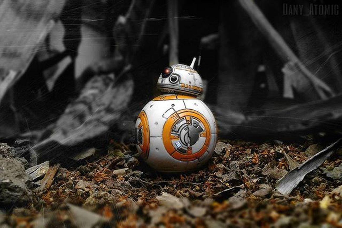 BB-8 🙂 TheForceAwakens Bb8 Astromech Starwarsblackseries Starwars TheSkywalkerlegacy Colorsplash Orange