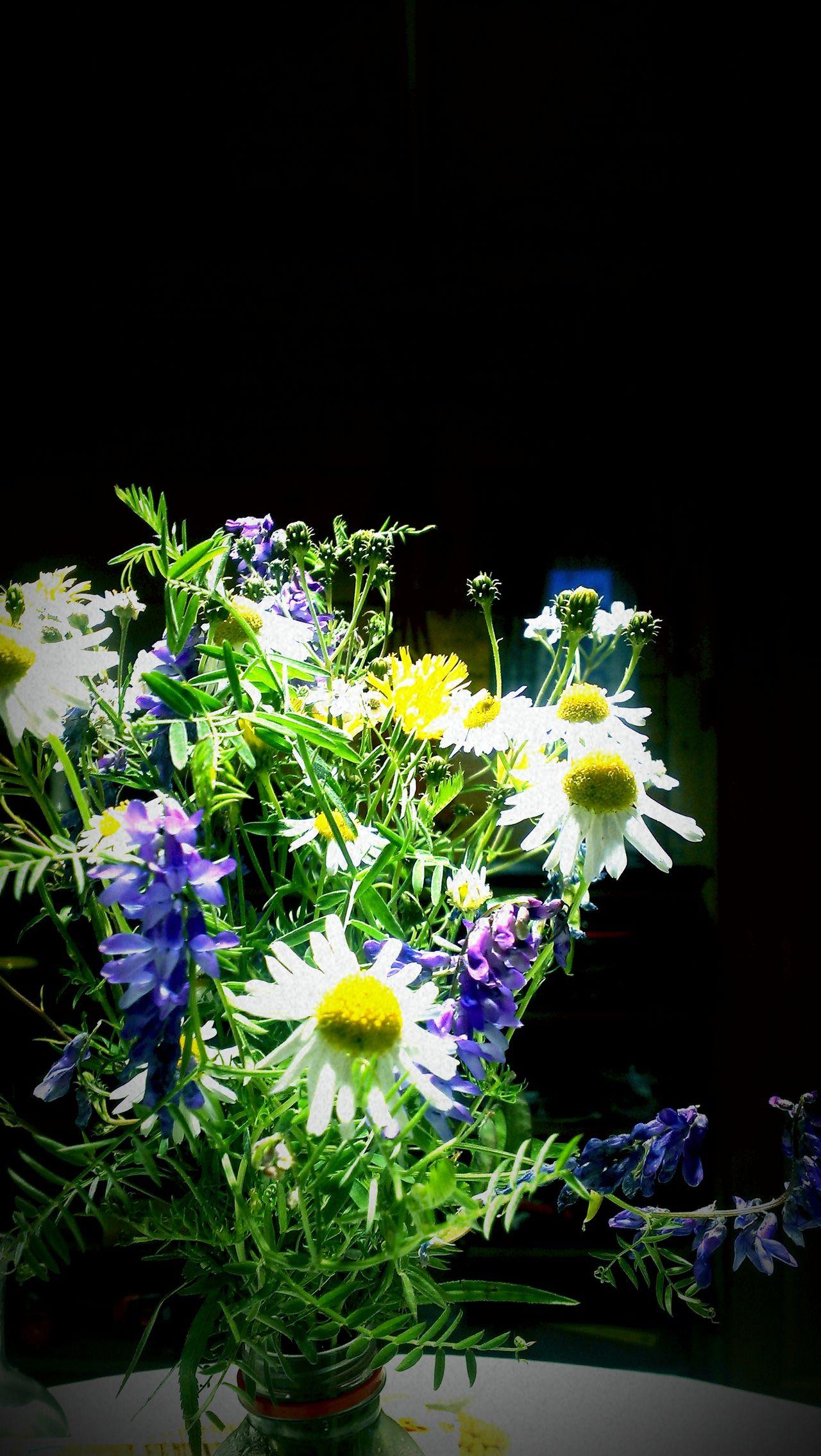 Flowers Bouquet Black