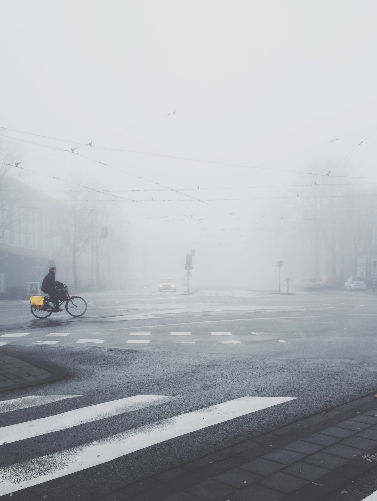Amsterdam VSCO VSCO Cam Vscogood Vscocam Fog Foggy Morning Bike Bike Ride Skrwt Celebrate Your Ride