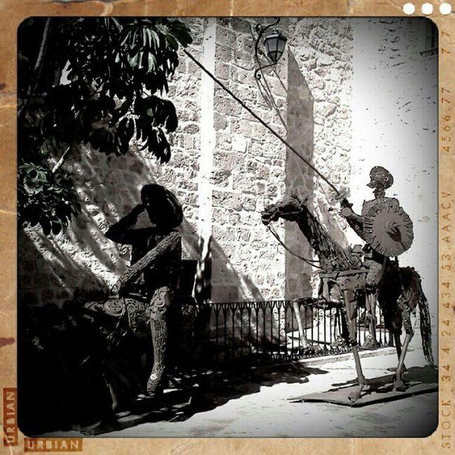 Quixote Quijote Morelia