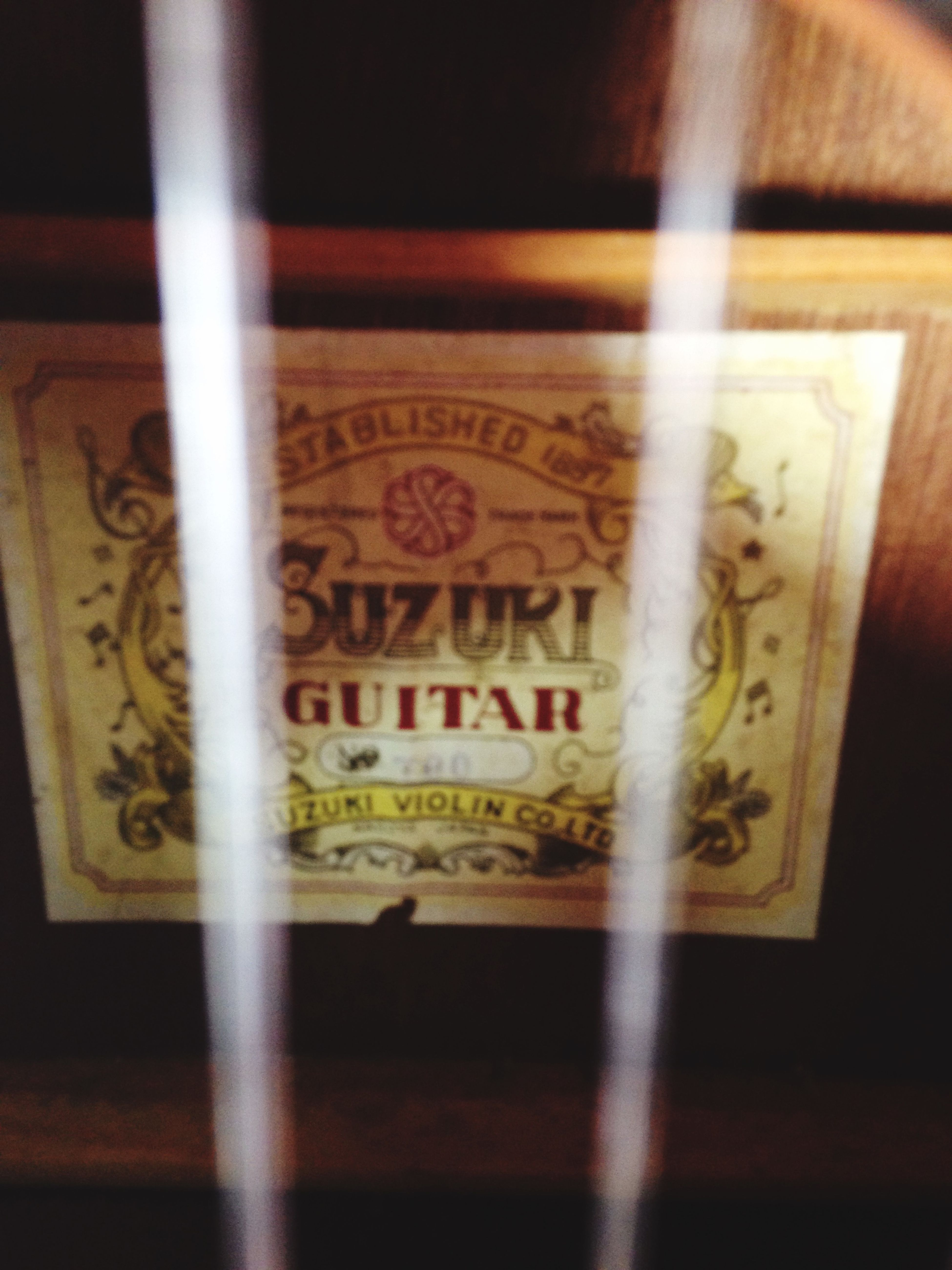Vintage Shopping Guitar IPhoneography